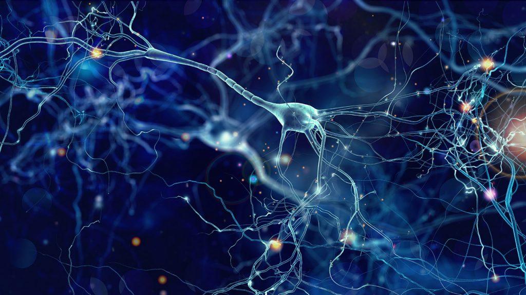 Neurologia Funzionale e Chiropratica